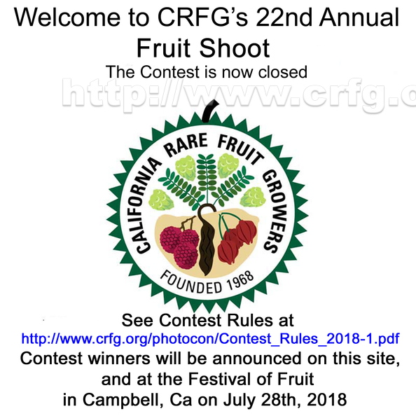 CRFG Contest_22_Closed.jpg