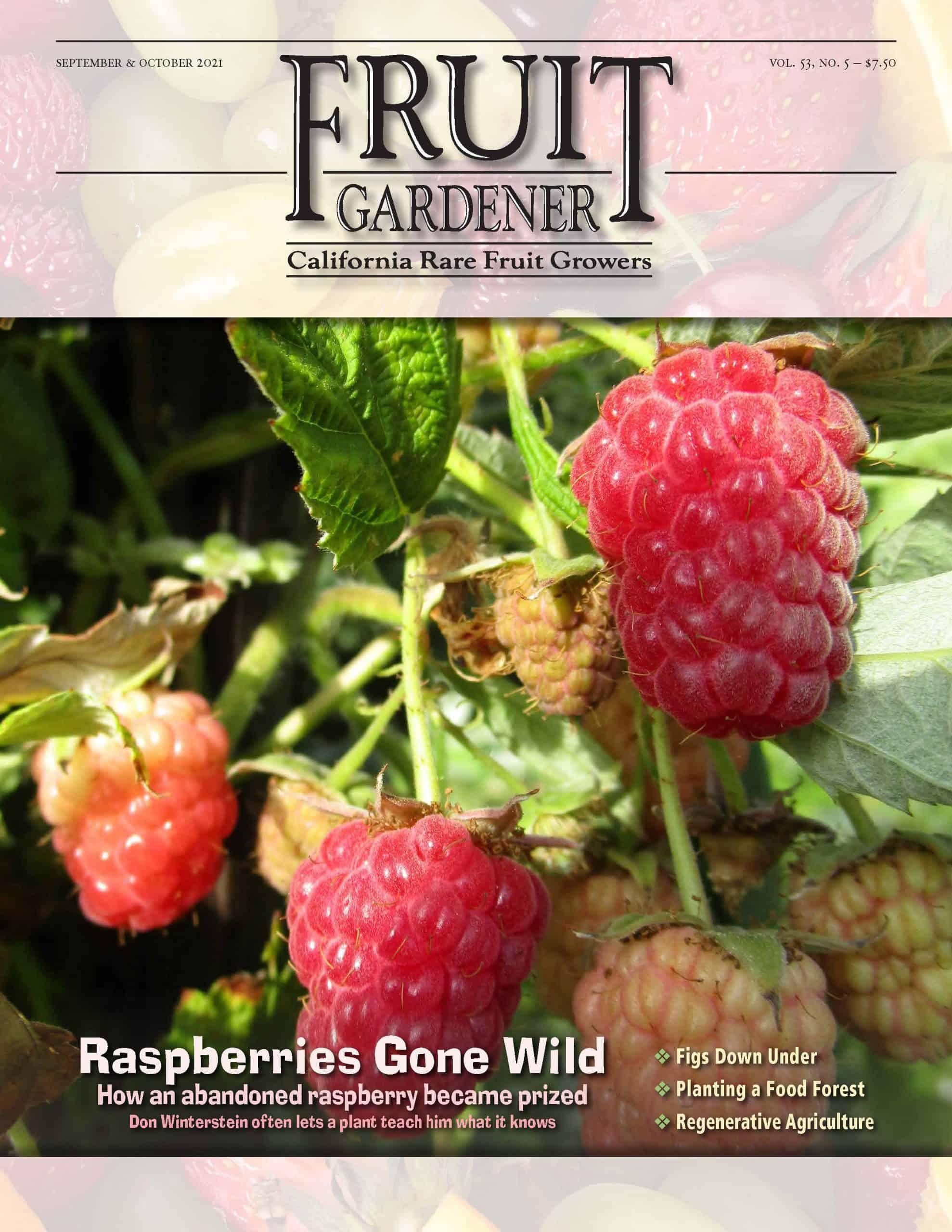 The Fruit Gardener
