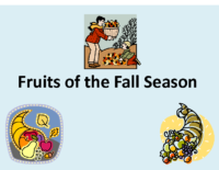 Fruits of the Fall Season Presentation