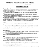 PRUNING DECIDUOUS FRUIT TREES 2014 Handout