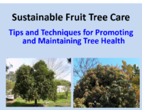 Sustainable Tree Care Presentation